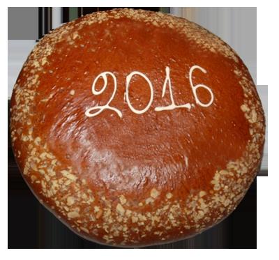 PROTPITA 2016