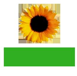 protovoulia agroton