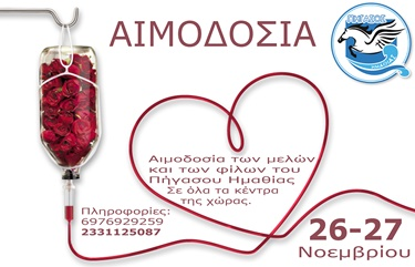 aimodosia-phgassos-noe2016