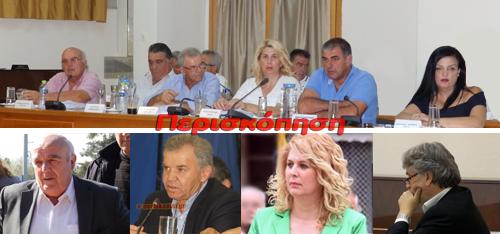 Φώτης Δημητριάδης, Δήμος Αλεξάνδρειας, δημοτικές εκλογές
