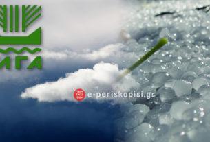 Μέχρι 3 Ιουλίου η οριστική δήλωση ζημίας για τον παγετό της 17ης Μαρτίου