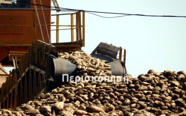 Ελληνική Βιομηχανία Ζάχαρης, εργοστάσιο Πλατέος Ημαθίας