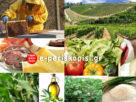 αγροδιατροφικός τομέας