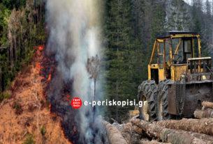 Νέες πυρκαγιές στον Αμαζόνιο και ο πρώτος απολογισμός των πυρκαγιών στην Αυστραλία