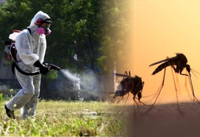 ψεκασμός κουνούπια