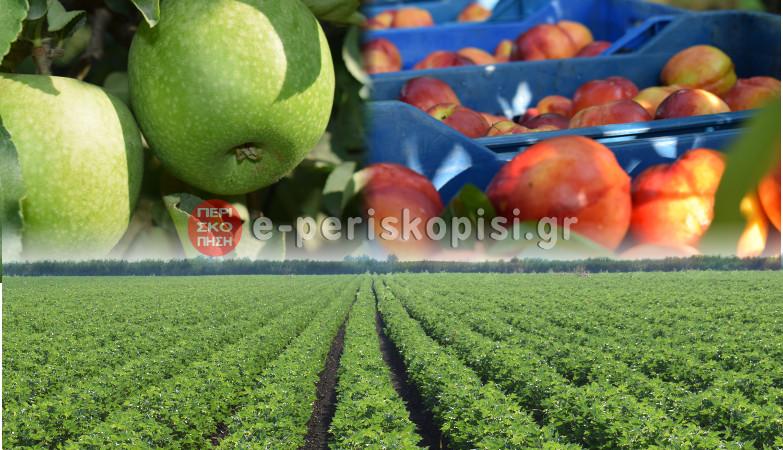 μήλα ροδάκινα χωράφια