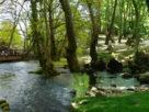 Νάουσα: ανοίγουν από 18 Μαΐου το Άλσος Αγίου Νικολάου και τα πάρκα του Δήμου
