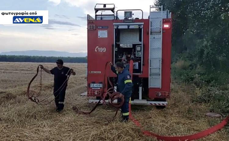 Φωτιά σε αγροτική περιοχή του Δήμου Αλεξάνδρειας